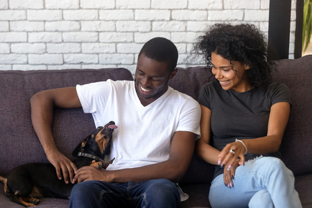 Happy african american young couple play with dog spending time together in living room, black husband and wife having fun caressing dachshund sitting on couch, family enjoy leisure at home with pet