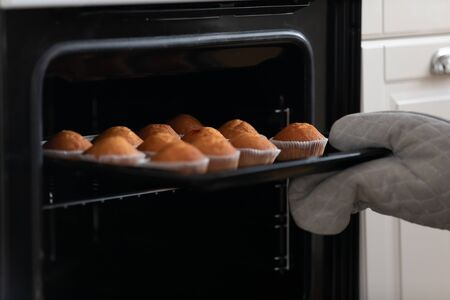 Close up cropped image housewife or professional confectioner taking tasty appetizing muffins out of oven. Freshly baked pastry ready for decorating or eating. Excellent culinary skills demonstrating.