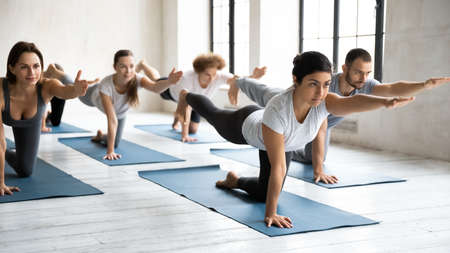 Focused young indian yoga instructor practicing bird dog position with serious motivated fit sporty diverse students. Active multiracial people doing parsva balasana, improving body balance indoors. Banque d'images - 150854559