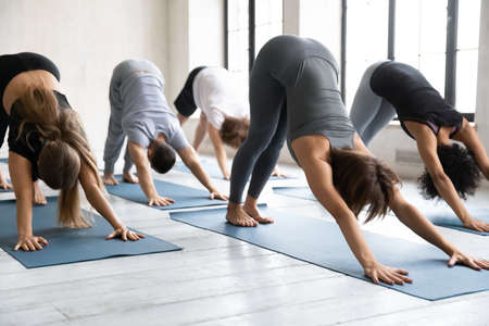 Young flexible multiethnic fit people standing in downward facing dog pose, stretching back arms muscles or enjoying morning surya namaskar routine together at group yoga class in modern studio.