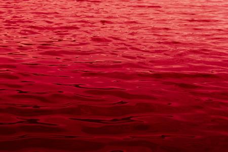 -血の海の水の表面のクローズ アップ