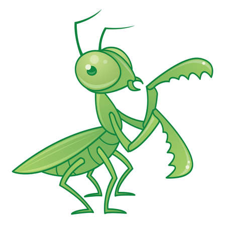 Vector drawing of a cute and friendly praying mantis character.