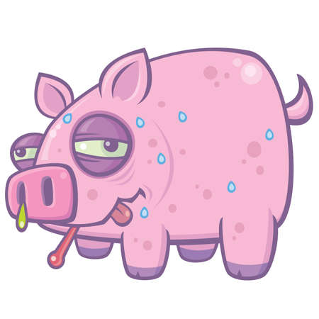 mucus: Vector cartoon illustration of a sweaty, sick pig with the Swine Flu.
