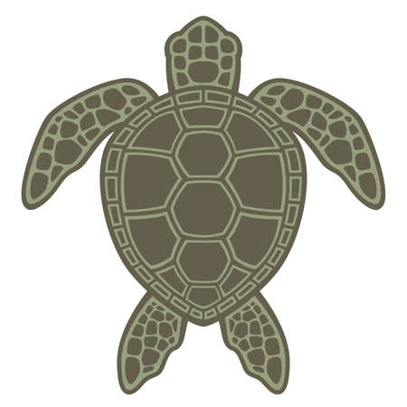 schildkr�te: Vektorgraphikillustration eine Gr�ne Meeresschildkr�te.