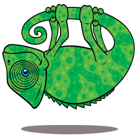 Vector cartoon illustration of a magical chameleon hanging from his own tail, levitating in the air.