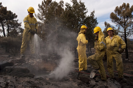 Forest firefighters putting out the embers of a forest fire, Spain Stock Photo