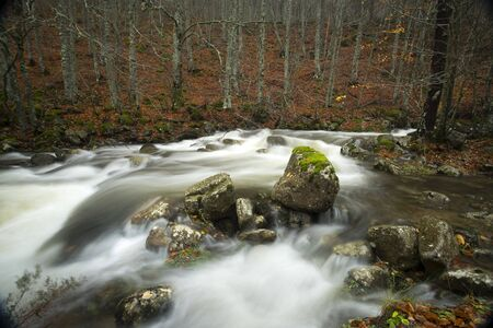 river in beech, rocks and rapids of the river in autumn