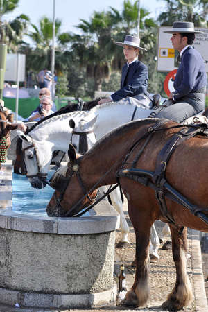 SEVILLE, SPAIN, APRIL FAIR horse and riders Drinking