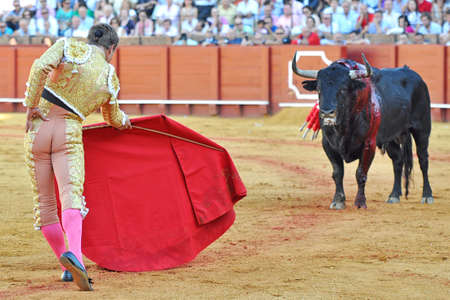 aciculum: Bullfighter s pass Editorial