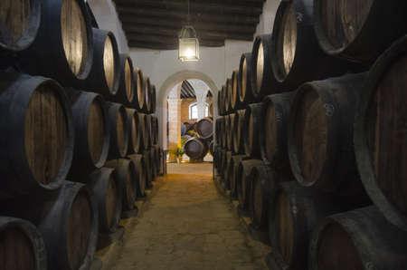 beautiful wine cellar with barrels