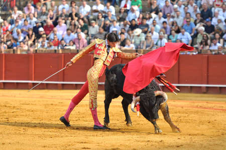capote: Seville - MAY 22  The bullfighter Victor Barrio in a bullfight in the Maestranza, during the April Fair, on May 11, 2011 in Seville, spain