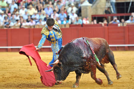 blood sport: Seville - MAY 22  The bullfighter David Galvan in a bullfight in the Maestranza, during the April Fair, on May 11, 2011 in Seville, spain