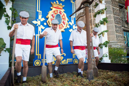 JEREZ DE LA FRONTERA, SPAIN-SEPTEMBER 10: Traditional grape stomp in Jerez de la frontera, inaugural ceremony of the festival of the harvest, where workers tread the grapes to get out the wine of sherry on sep 10, 2014 in Jerez de la frontera.