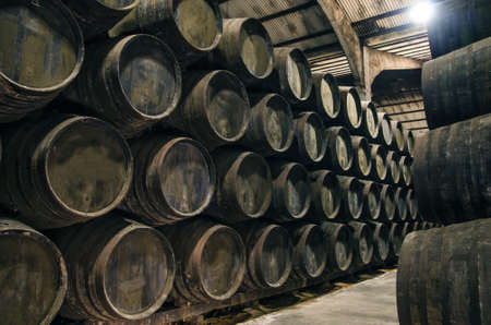 Old cellar with barrels for wine or whiskey photo