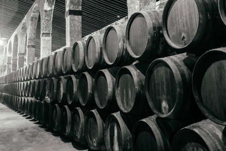 Barrels for whiskey or wine stacked in the cellar in black and white