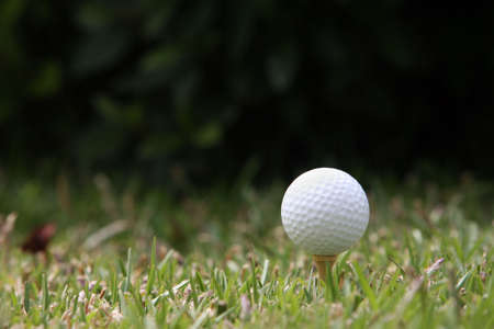 Golf ball Stock Photo - 482214