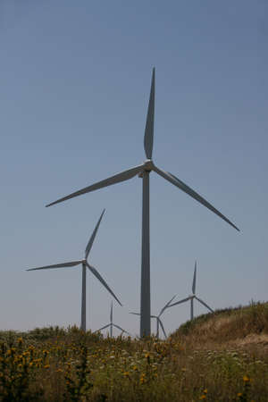 conservational: wind turbines