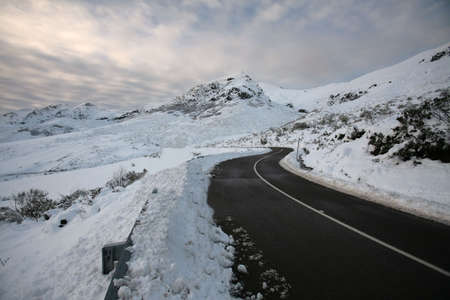 winter road: road to the snow
