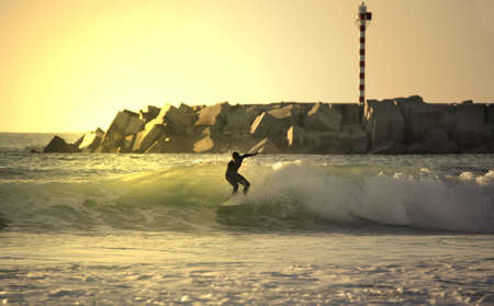 plucky: sunset surfer