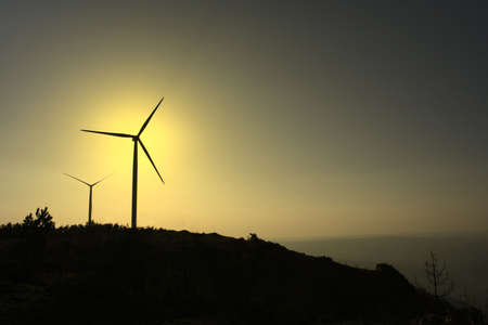 conservational: sunset photo of wind turbines
