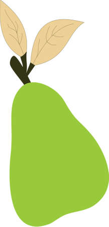 illustration of a green pear Vector
