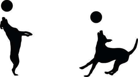 illustration of a dog catching a disc Vector