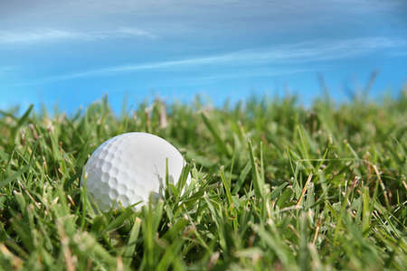 golf ball in the grass with blue sky as background Stock Photo - 890366