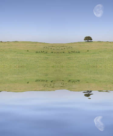 field landscape with moon reflex on the water Stock Photo - 890371