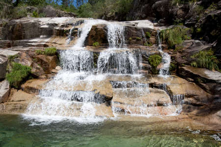 waterfall with trees and transparent water photo