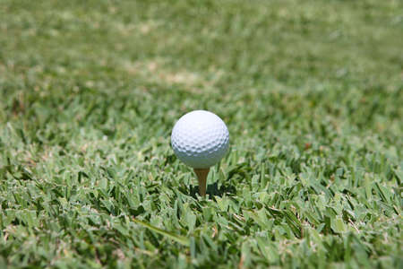 dimple: golf and dimple in the grass