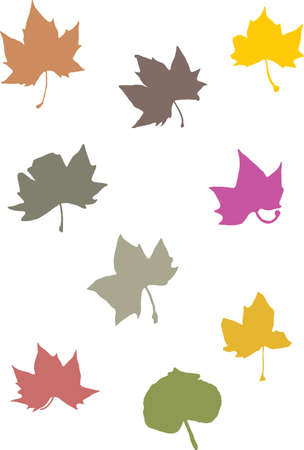 illustration of several leaves with different colors Stock Vector - 3663324