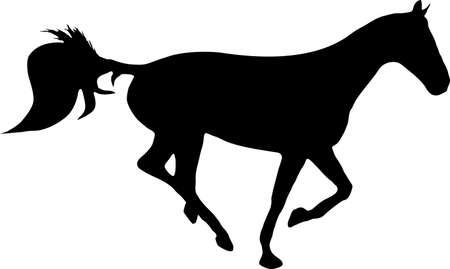 galop: illustration d'un cheval de course