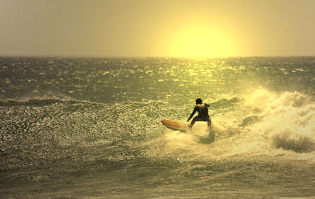 brave: sunset surfer in the wave