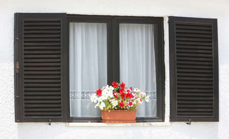 Window with flowers on a white background photo