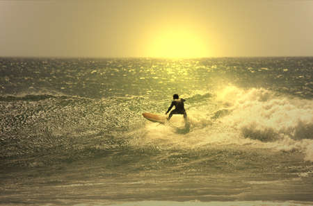 surf board: sunset surfer in the wave