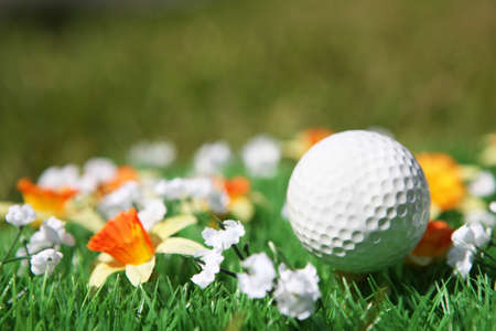 golf ball in a field with flowers Stock Photo