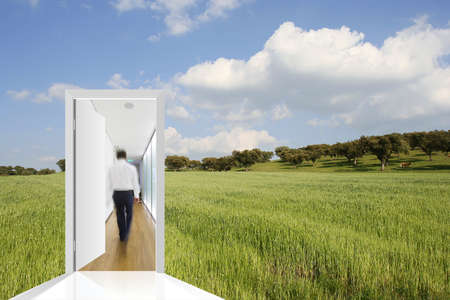 landscape with a green field and blue sky with a door to the office photo