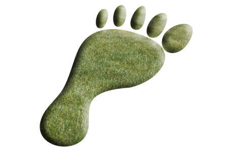 top view of a foot made of grass Stock Photo - 9599848