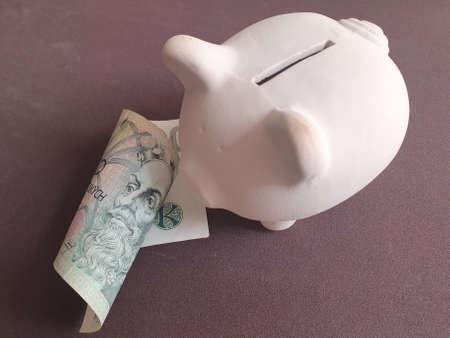 white piggy bank and czech banknote of 100 korun