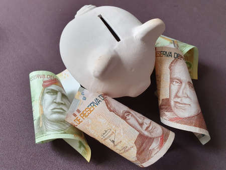 white piggy bank and peruvian banknotes of different denominations