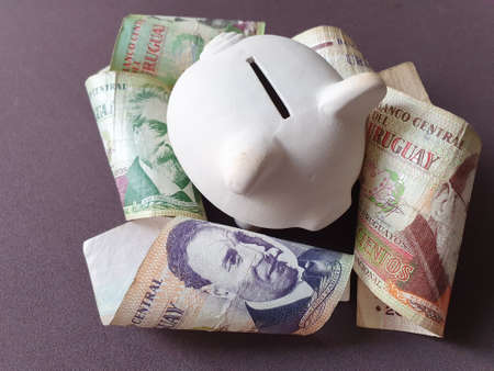 white piggy bank and uruguayan banknotes of different denominations Stockfoto