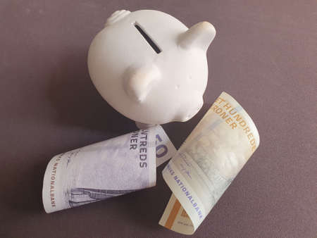 white piggy bank and danish banknotes of different denominations
