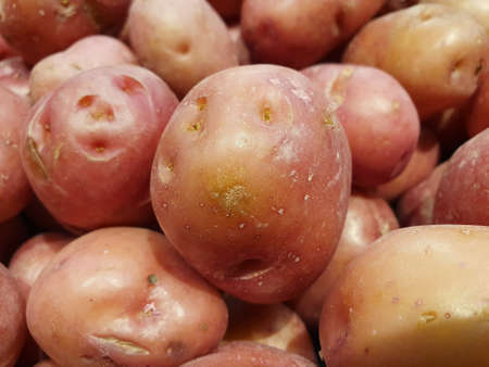 heap of potato vegetable in a market, background and texture
