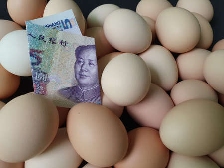 price in consumption and production cost of egg, chinese banknote of five yuan and heap of organic chicken egg