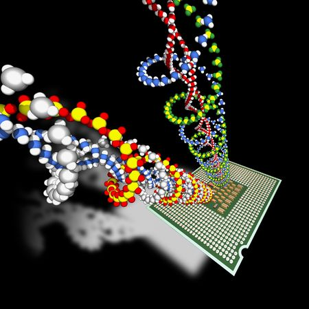 Microprocessor calculates DNA's molecules. Stock Photo - 6676868