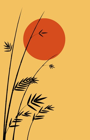 Sunset and bamboo  Vector