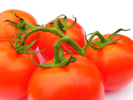 Red ripe tomatoes on the green branch on white background. Standard-Bild