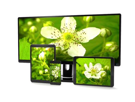 Computer gadgets and nature concept on white background (3d illustration). Standard-Bild