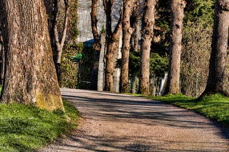 Pathway in Bergen Norway