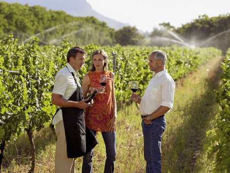 three persons only: People drinking wine at a vineyard